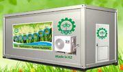 Гидропонное оборудование для выращивания готового корма. Кентау